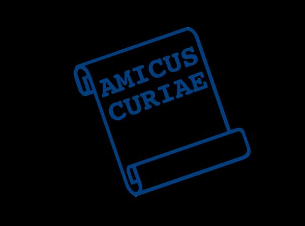 Amicus Briefs